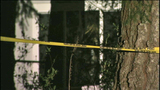 Bodies found in burned-out home - (6/8)