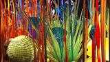 Seattle Center Chihuly exhibit opens - (15/16)