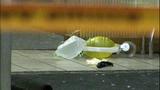 Bullet casings, evidence markers litter scene - (7/21)