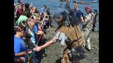 SeattleInsider: Seafair Pirates Storm Alki… - (25/25)