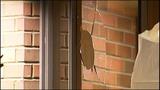 Vandals attack Seattle banks - (9/11)