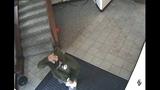 Redmond bank robbery surveillance stills - (3/3)