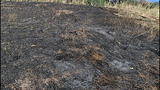 Wildfire leaves blackened path of destruction - (2/21)