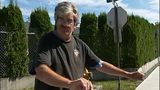 Thomas, Good Samaritan who helped Everett dog attack victim_2462041