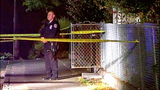 Investigators examine scene of shooting - (6/14)