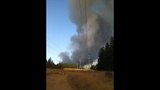 Fast-growing fire devours forest - (20/25)