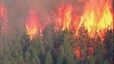 Fast-growing fire devours forest - (8/25)
