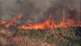 Fast-growing fire devours forest - (10/25)