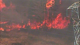 Fast-growing fire devours forest - (7/25)