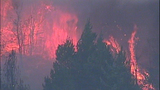 Fast-growing fire devours forest - (6/25)