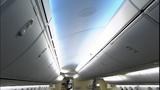 Inside ANA Airlines Boeing 787 Dreamliner - (4/10)
