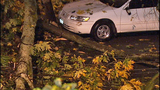 Weather causes crashes, topples trees - (12/12)