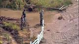 Broken beaver dam floods homes, road - (13/20)