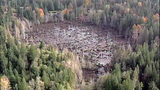 Broken beaver dam floods homes, road - (14/20)