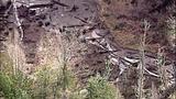 Broken beaver dam floods homes, road - (8/20)