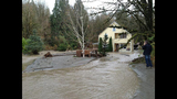 Broken beaver dam floods homes, road - (11/20)