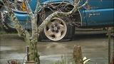 Vicious vandal attack in Marysville - (9/10)