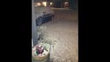 KIRO 7 viewers share snow photos - (14/24)