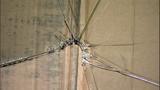 Windows shattered at Tacoma church - (4/15)