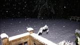 Dream of White Christmas comes true, for some - (6/12)
