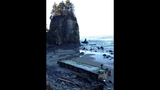 Damaged dock washes ashore at Oly Natl Park - (13/14)