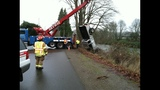Truck battered after flight into river - (3/3)