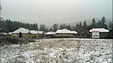 Snow whitens landscapes - (17/17)
