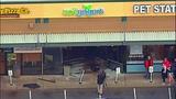 Young driver rams through yogurt shop - (10/13)
