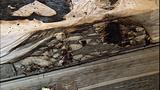 Marysville arson and assault_3203794