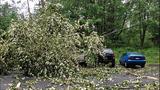 Sudden storm wreaks havoc - (9/25)