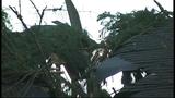 Sudden storm wreaks havoc - (20/25)