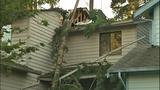 Sudden storm wreaks havoc - (2/25)