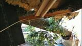 Sudden storm wreaks havoc - (24/25)