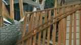 Sudden storm wreaks havoc - (3/25)