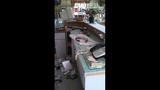 Burglar hits Olympia businesses - (2/8)