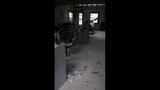 Burglar hits Olympia businesses - (5/8)