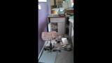 Burglar hits Olympia businesses - (1/8)