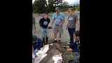 12-foot shark washes up on San Juan Island… - (3/5)