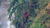 PHOTOS: Big Rock fire burns near Mount Vernon - (11/19)