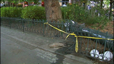 PHOTOS: Driver hits Pioneer Square pergola then flees - (4/10)