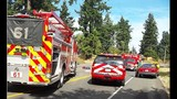 PHOTOS: Car hits bicyclist in Federal Way - (2/12)