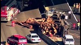 PHOTOS: Logging truck tips over on I-405 near… - (4/10)