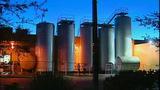 Darigold's Seattle plant_3894118