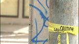PHOTOS: Cops say drunken vandals… - (6/15)