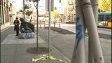 PHOTOS: Cops say drunken vandals… - (13/15)