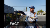 FACT or FICTION: The services affected by the… - (1/25)