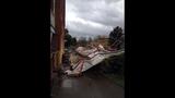 PHOTOS: Windstorm rocks Seattle, closes… - (10/25)