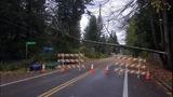 PHOTOS: Windstorm rocks Seattle, closes… - (24/25)