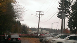 PHOTOS: Windstorm rocks Seattle, closes… - (18/25)