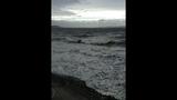 PHOTOS: Windstorm rocks Seattle, closes… - (3/25)